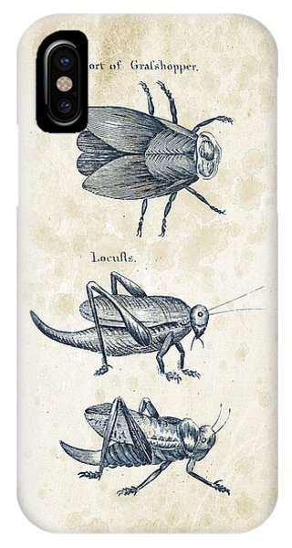 Insect iPhone Case - Insects - 1792 - 08 by Aged Pixel