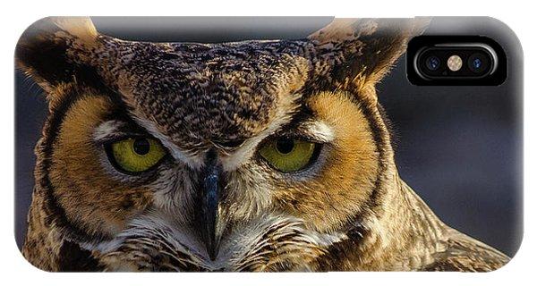 Intense Owl IPhone Case