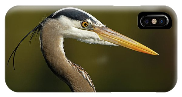 Intensity Of A Heron IPhone Case