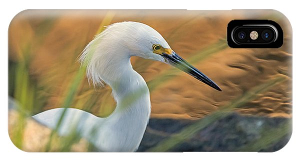 IPhone Case featuring the photograph Intent Hunter by Kate Brown