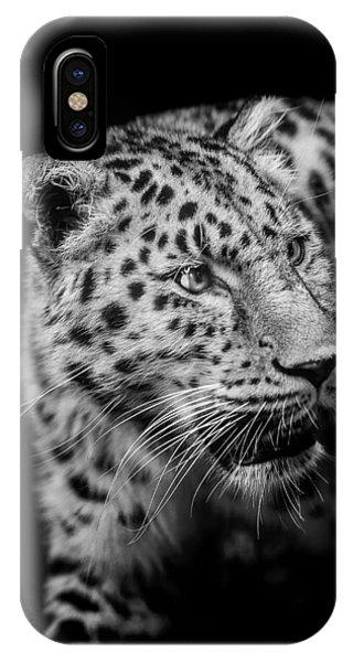 Leopard iPhone Case - Intent by Paul Neville