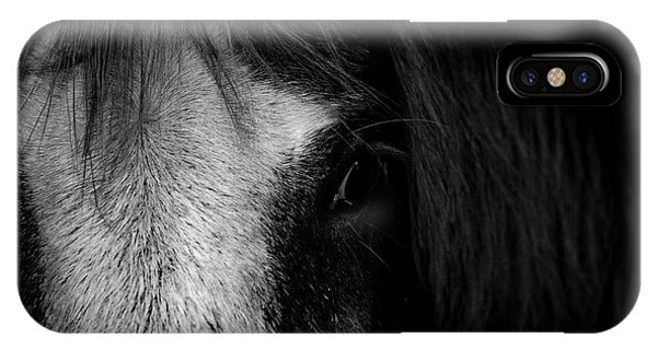 Equine iPhone Case - Intimate  by Paul Neville