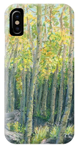 Into The Aspens IPhone Case