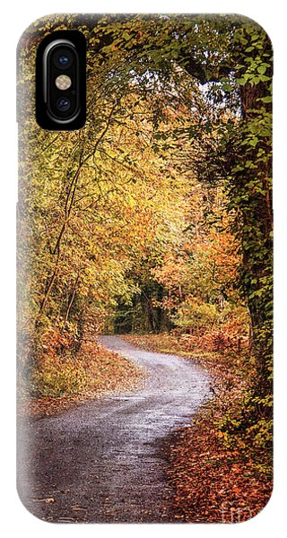 Irish iPhone Case - Into The Autumnsphere by Evelina Kremsdorf