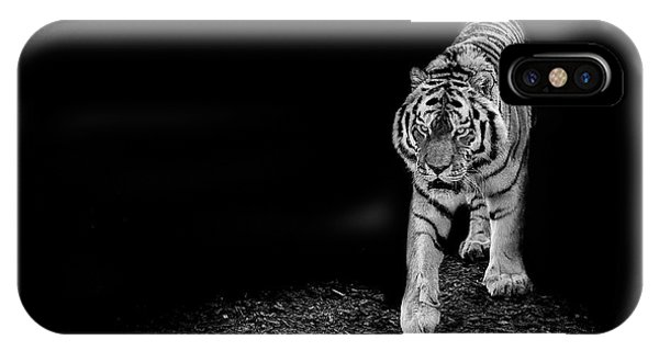 Tiger iPhone Case - Into The Light by Paul Neville
