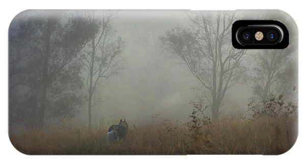 Into The Mist IPhone Case