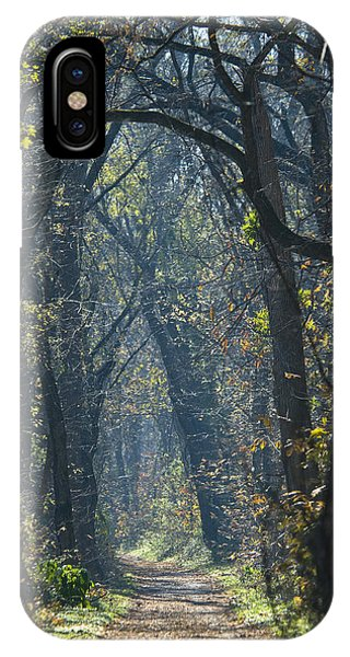 Into The Wood IPhone Case