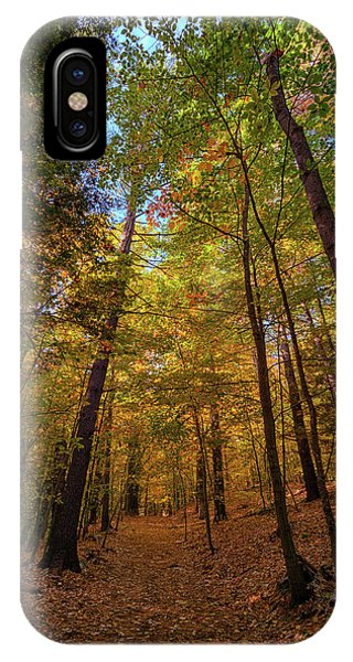 New England Fall Foliage iPhone Case - Into Vaughan Woods by Rick Berk