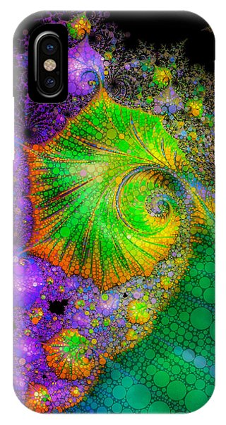 Investigating Fractals Two IPhone Case