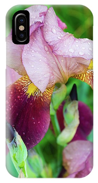 Iriis After Rain IPhone Case