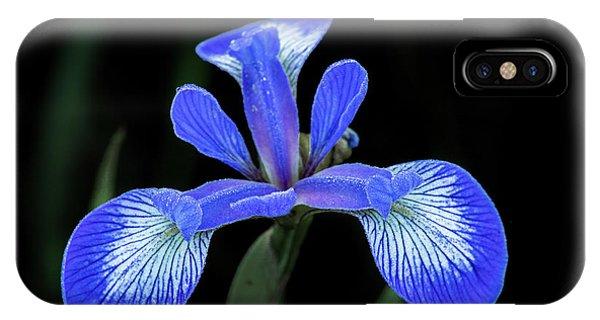Iris #2 IPhone Case