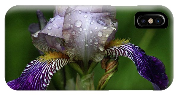 Iris After The Rain 1409 H_2 IPhone Case