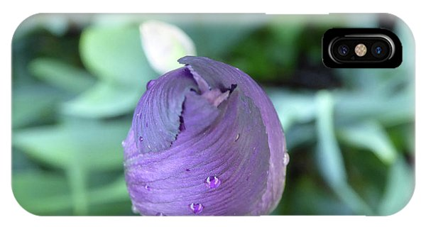 Iris After The Rain V IPhone Case