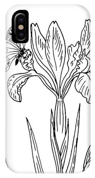 Simple Iris Flower Drawing