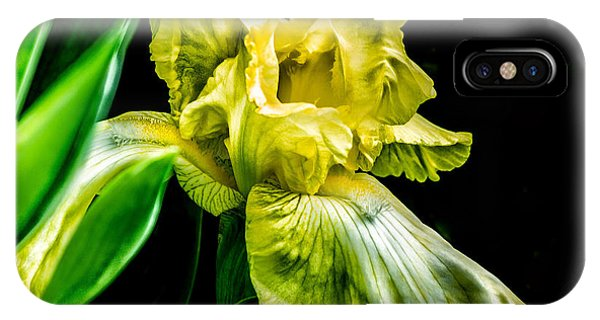 IPhone Case featuring the photograph Iris In Bloom by Richard Ricci