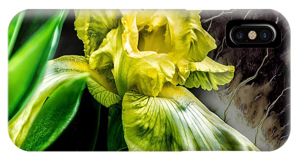 IPhone Case featuring the photograph Iris In Bloom Two by Richard Ricci