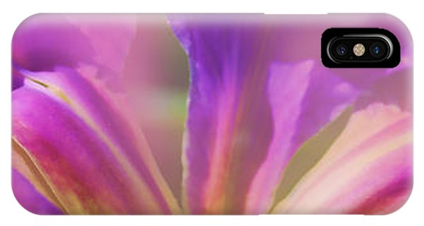 Iris Panorama IPhone Case