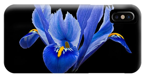 IPhone Case featuring the photograph Iris Reticulata, Black Background by Paul Gulliver