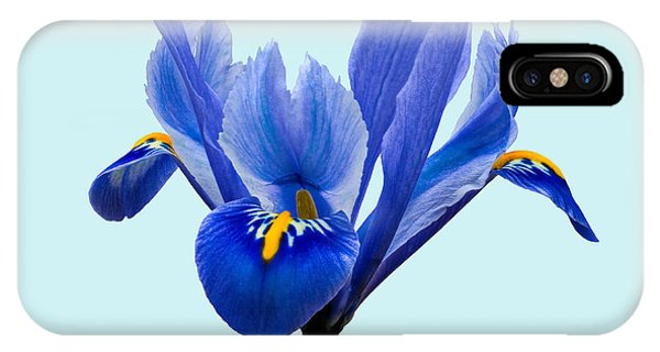 IPhone Case featuring the photograph Iris Reticulata Blue Background by Paul Gulliver