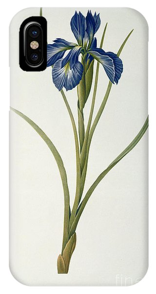 Botanical iPhone Case - Iris Xyphioides by Pierre Joseph Redoute