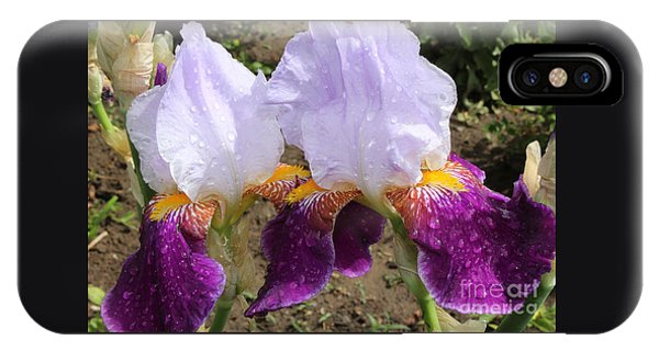 Irises Sparkling With Rain Droplets IPhone Case