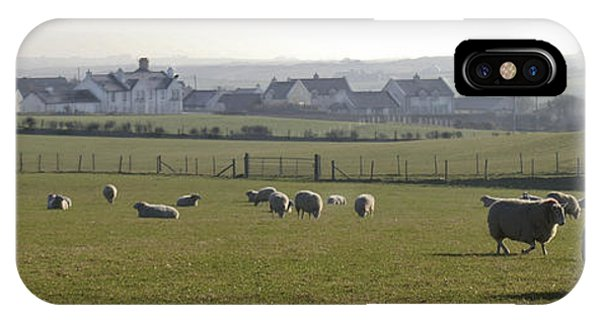 Irish Sheep Farm I IPhone Case