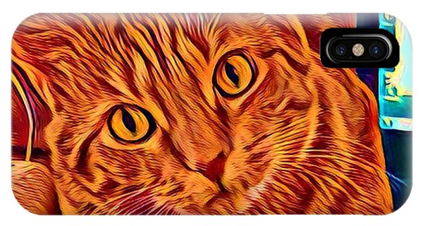 iPhone Case - Is There A Mouse In The House? by Gina Callaghan
