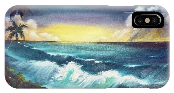 Island Sunset  Phone Case by Dina Holland