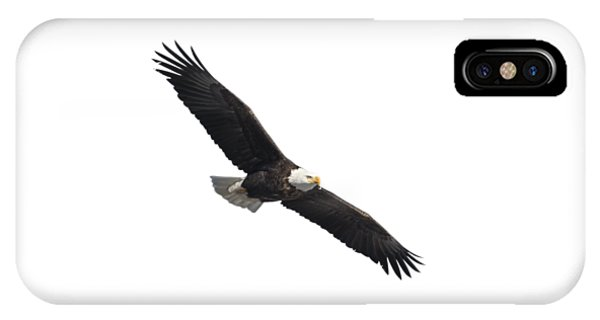 Isolated American Bald Eagle 2016-2 IPhone Case