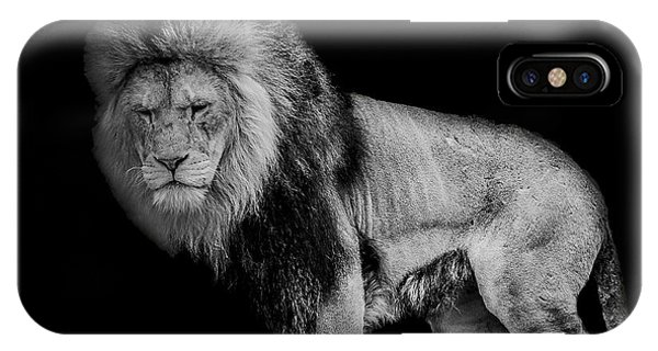 Big Cat iPhone Case - Isolated by Paul Neville