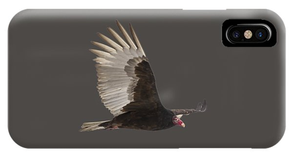 Isolated Turkey Vulture 2014-1 IPhone Case