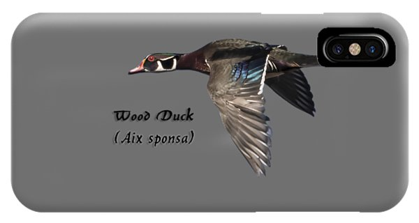 Isolated Wood Duck 2017-1 IPhone Case