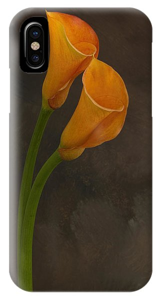 It Takes Two To Tango IPhone Case