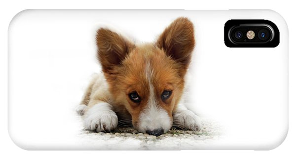 It Wasn't Me Corgi IPhone Case