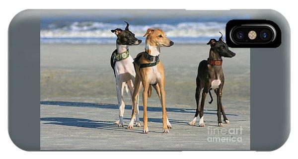 Italian Greyhounds On The Beach IPhone Case