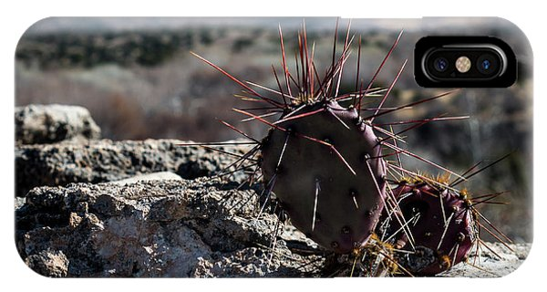 Itty Bitty Prickly Pear Cactus IPhone Case