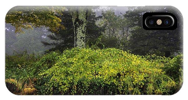 Ivy Garden IPhone Case