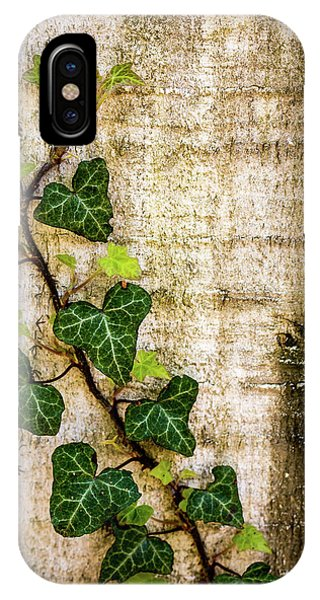 Ivy On The Fence Post IPhone Case