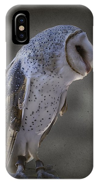 Ivy The Barn Owl IPhone Case
