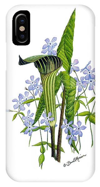 Jack-in-the-pulpit With Wild Sweet Williams IPhone Case
