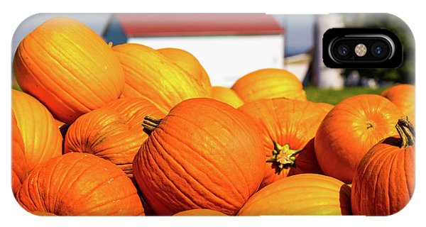 Jack-o-lantern Pumpkins At Farm IPhone Case