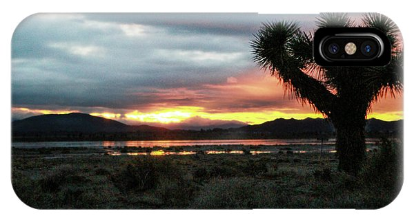 Jacob Tree Sunset - El Mirage IPhone Case