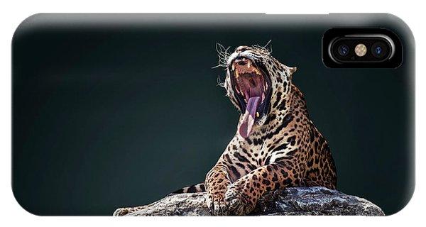 Quick iPhone Case - Jaguar 4 by Ivan Vukelic