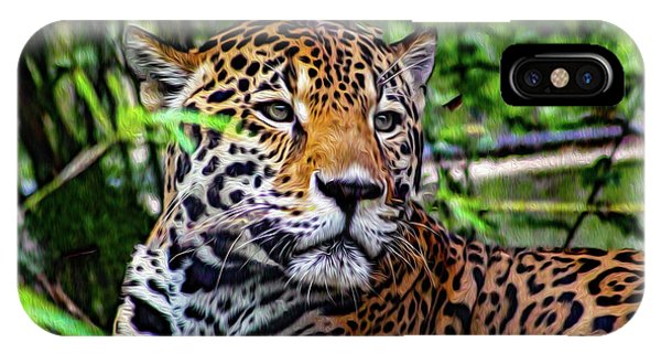 Jaguar At Peace IPhone Case