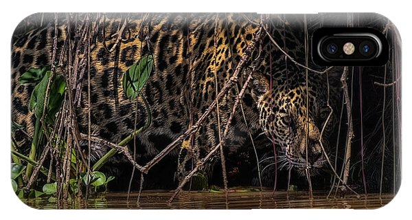 Jaguar In Vines IPhone Case