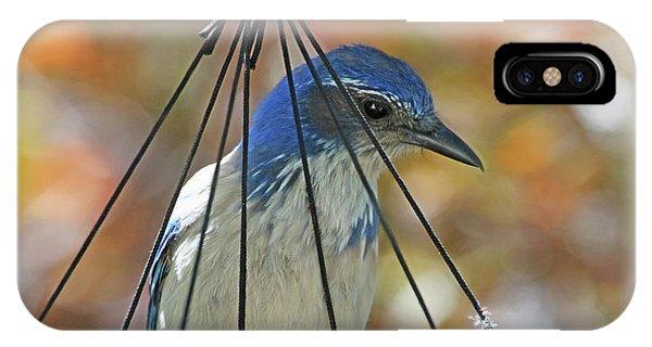 Jail Bird IPhone Case