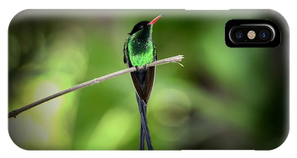 Jamaican Hummingbird IPhone Case