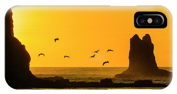 James Island And Pelicans IPhone Case