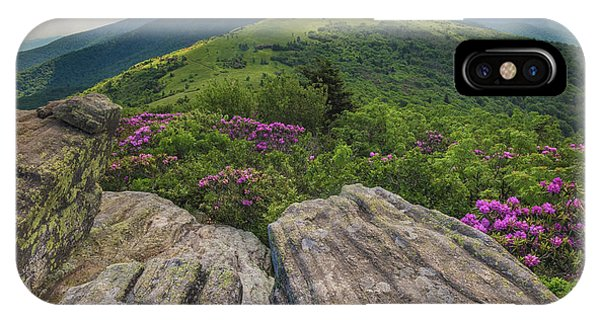 Jane Bald Rhododendrons IPhone Case
