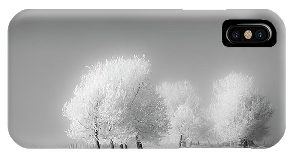 January Frost IPhone Case